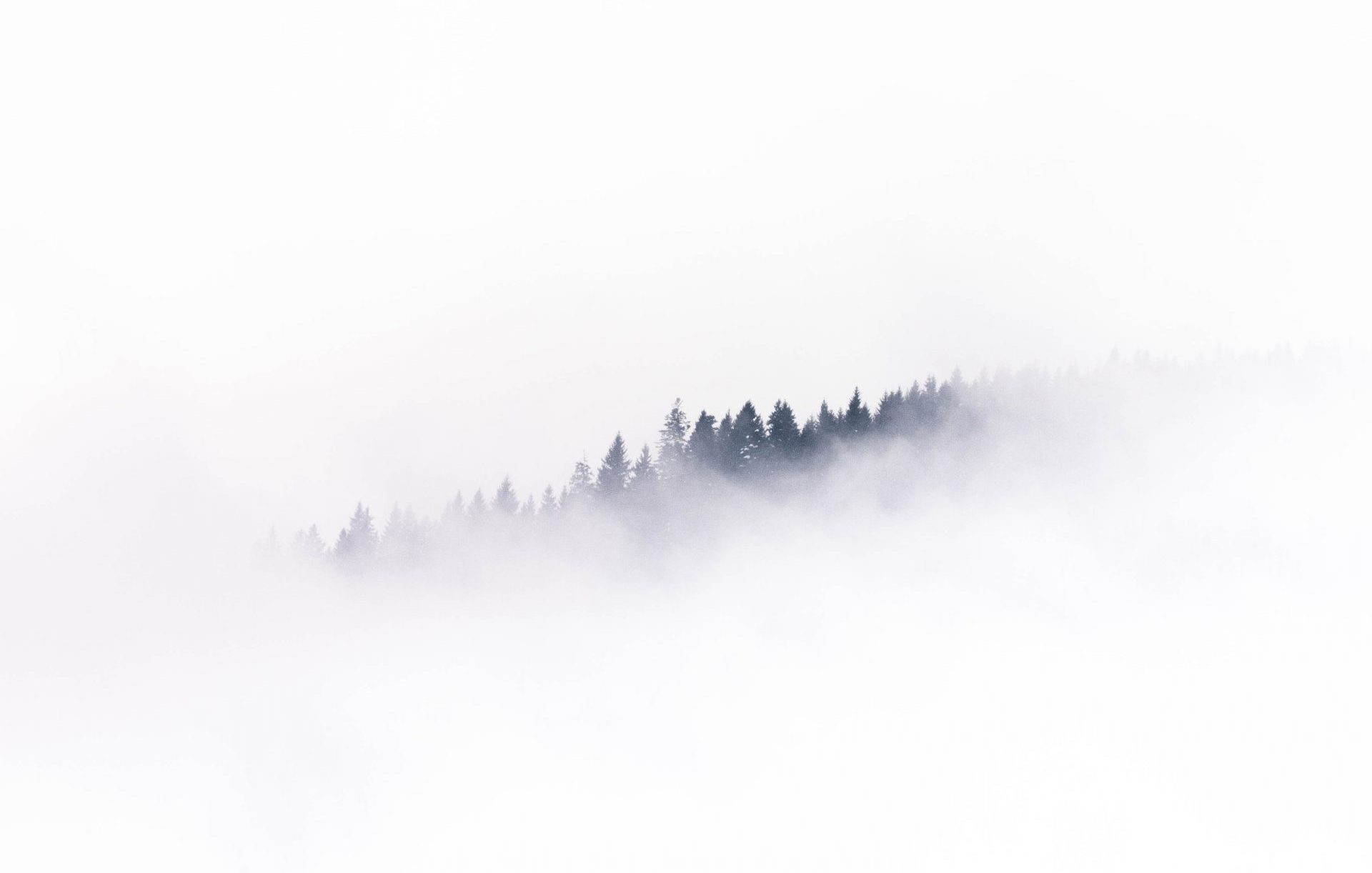 picture of a foggy mountain