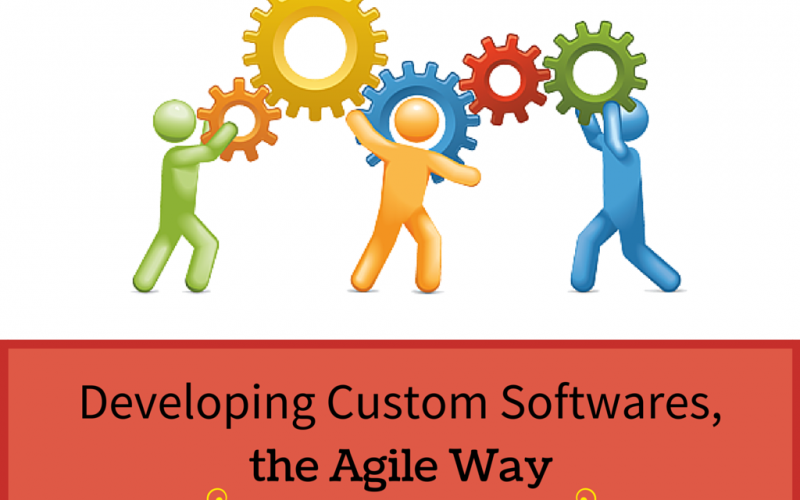 Developing Custom Softwares, the Agile Way